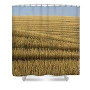 Tracks In Field Shower Curtain
