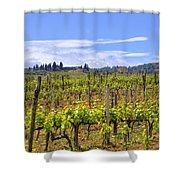 Tuscany - Montalcino Shower Curtain