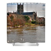 Worcester Cathedral And Swans Shower Curtain