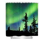 Yukon Taiga Spruce Northern Lights Aurora Borealis Shower Curtain