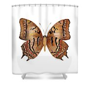 62 Galaxia Butterfly Shower Curtain by Amy Kirkpatrick