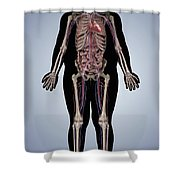 Obesity Shower Curtain