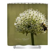 6337a Shower Curtain
