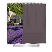 Abbaye De Senanque Shower Curtain