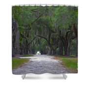 Allee Of Live Oak Tree's Shower Curtain