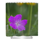Bloody Geranium Shower Curtain