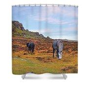 Dartmoor Shower Curtain