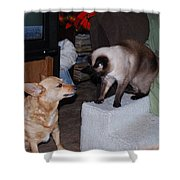 Foxy And Ninja Shower Curtain