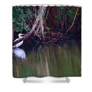 Great White Heron At Waters Edge Shower Curtain