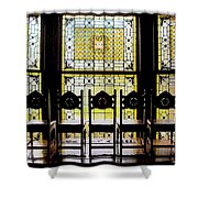 7 Hairs And Stained Glass Db Shower Curtain
