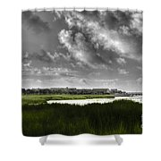 Southern Tall Marsh Grass Shower Curtain