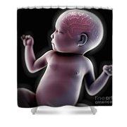 Newborn Anatomy Shower Curtain