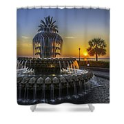 Pineapple Fountain At Sunrise Shower Curtain