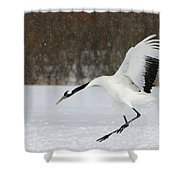 Red-crowned Cranes Shower Curtain