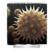 Sunflower Pollen Shower Curtain