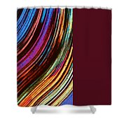 Tigers Eye Shower Curtain