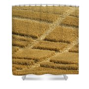 Tracks In Field Shower Curtain