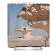 White Desert Shower Curtain