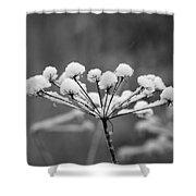 Winter Flowers Shower Curtain