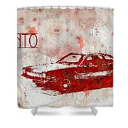 71 Pinto Shower Curtain