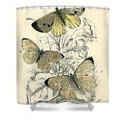Butterflies Shower Curtain