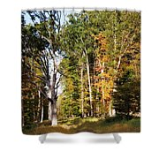 Autumn 2013 Shower Curtain