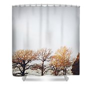 Autumn Shower Curtain