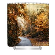 Late Autumn Trail Shower Curtain