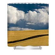 Farm Field Shower Curtain