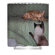 Foxy And Ninja Shower Curtain