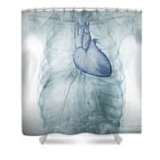 Heart Within The Chest Shower Curtain