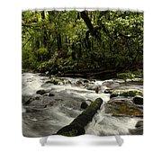 Jungle Stream Shower Curtain
