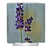 Lavender On Linen Shower Curtain