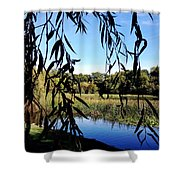 Leaves Shower Curtain by Les Cunliffe