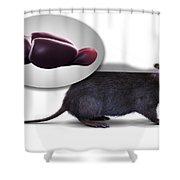Rat Brain Anatomy Shower Curtain