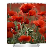Red Shower Curtain