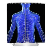 The Nervous System Shower Curtain