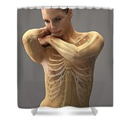 The Skeletal System Female Shower Curtain