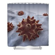 Virus Particles Shower Curtain