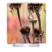 Wilted Flower  Shower Curtain