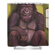 800 Pound Gorilla In The Room Edit 4 Shower Curtain