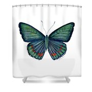 82 Bellona Butterfly Shower Curtain by Amy Kirkpatrick