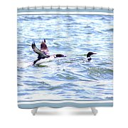 8875-002 - Fb Shower Curtain