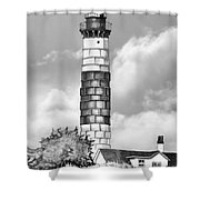 Big Point Sable Shower Curtain