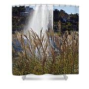 Echo Park L A  Shower Curtain