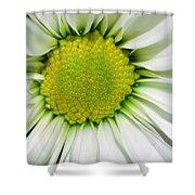 Flower Closeup Shower Curtain