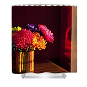 Multicolored Chrysanthemums In Paint Can Shower Curtain