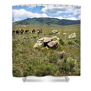 Rock Along The Trail Shower Curtain