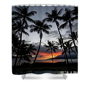 Silhouette Of Palm Trees At Dusk Shower Curtain