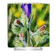 Spring Wild Flower Shower Curtain